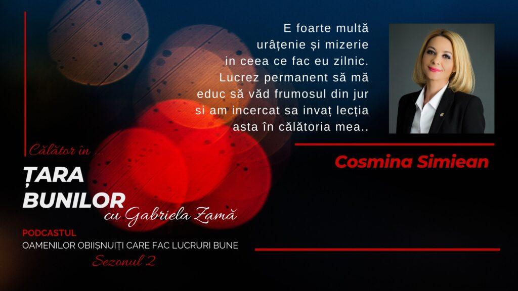 Cover Cosmina Simiean youtube